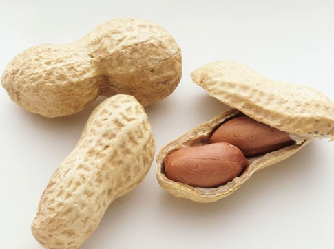 peanuts-with-shell.jpg